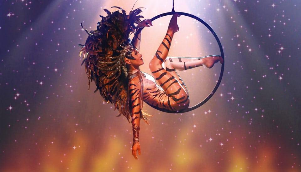 Spectacle Utopia, cerceau, tigre et plumes, Voulez-Vous